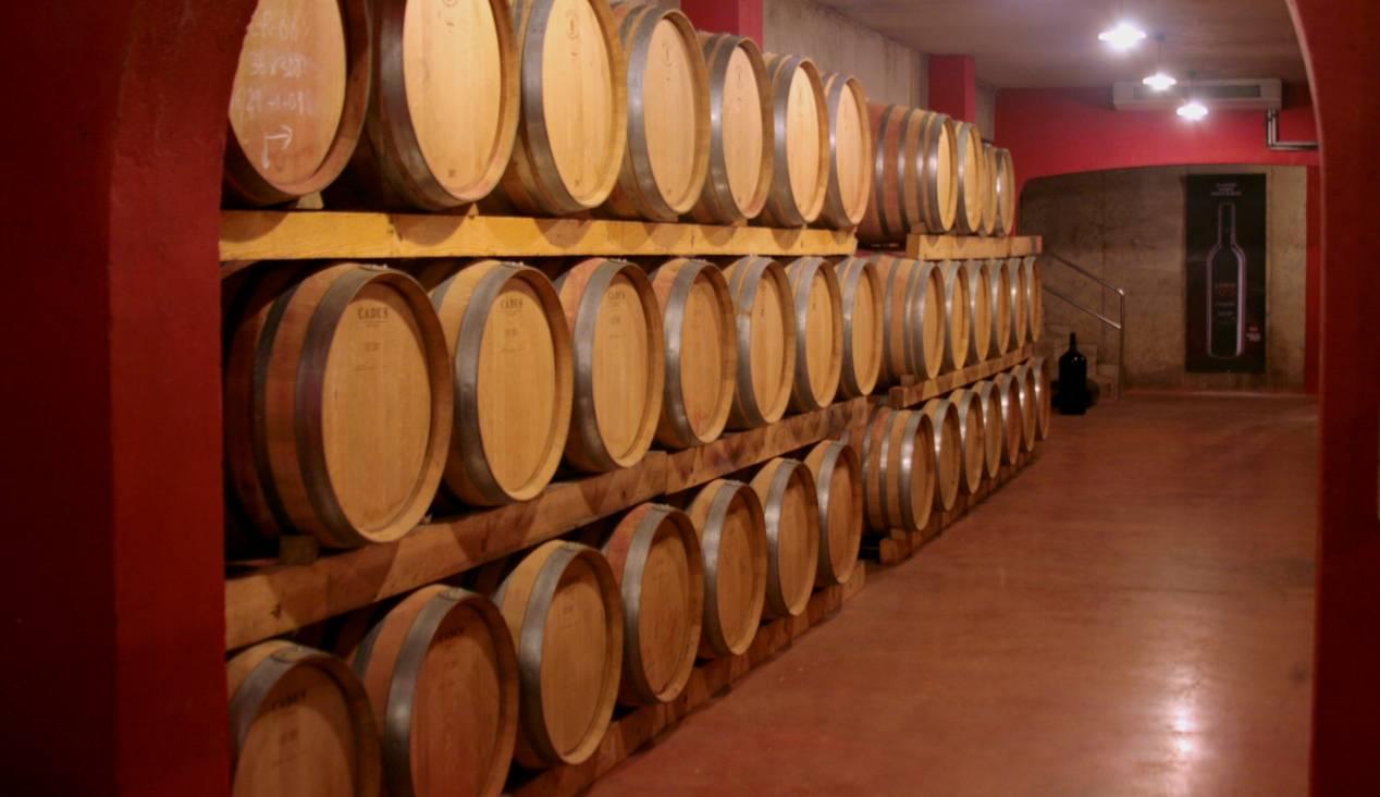 Weingüter und Bodegas Stadt Portal Mallorca